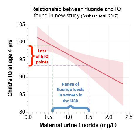 Higher Levels Of Urinary Fluoride >> Fluoride Free Nz Us Govt Funded Study On Fluoride Exposure In